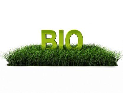 Czy folie BIO mogą być ekologiczną alternatywą dla przemysłu?